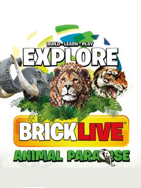 BRICKLIVE(砖享)动物王国环保展--鸟巢站